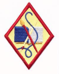 Book Artist Girl Scout Cadette badge