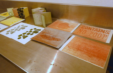 Student work from Sarah Bryant's Pressure Printing class at Paper and Book Intensive 2013